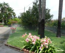 Impianto irrigazione in viletta con Pop-Up a scomparsa