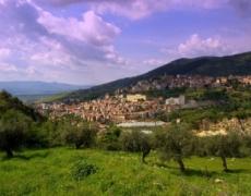Imu agricola, tutto quello che c'è da sapere per gli agricoltori siciliani