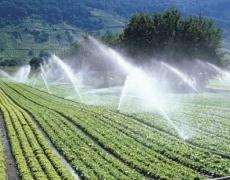 L'irrigazione Agricola Non Parte: Atto Ispettivo Di D'Asero